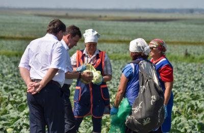Евгений Куйвашев ввёл режим ЧС из-за засухи